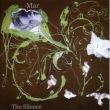 The Silence专辑 Mar