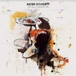 Grace/Wastelands专辑 Pete Doherty